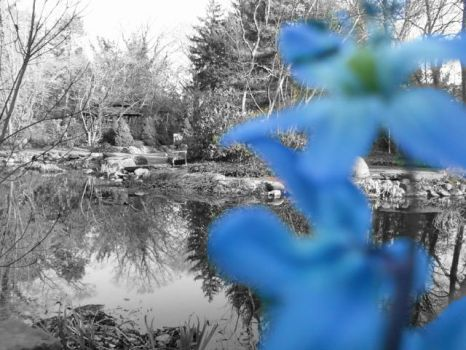 The Blue Sayen Flower by ehpituhmee