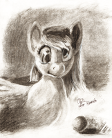 Another Rescan:  Derpy Study by Obsequiosity