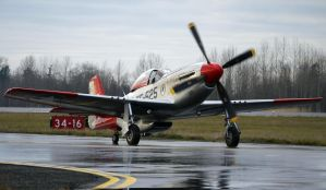 North American TF-51D Taxi 4 by shelbs2