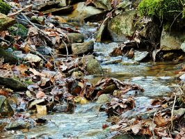 Cold Water Flow 02 by TemariAtaje