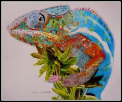 Panther chameleon drawing by BarbieSpitzmuller