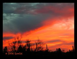 Clouds N Fire Winter Sunset by RooCat