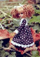 Autumny Licca by thelocksley