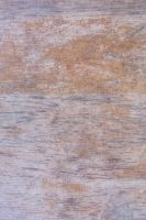 White washed wood with grain by paintresseye