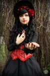 Red Rose Lolita 2 by Enolla