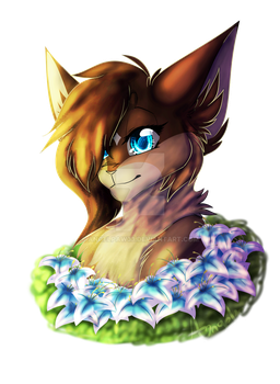Lillypaw |GIFT| by Angelpaw33