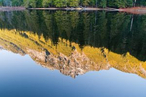 Barclay Lake Reflection by elpez7