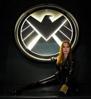 Spider Pose at SHIELD by Lady-Skywalker