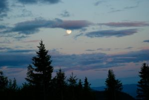 Watching the moon coming up in Norway by WolfsbeRoses