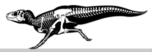 Naked Tyrannosaurus Rex Running, skeletal drawing by oghaki