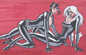 Catwoman and Black Cat- A Delightful Pair by RobertMacQuarrie1