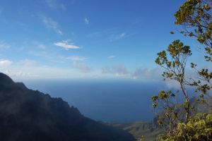 Kalalau Valley from the Alaka'i ii by Forest-Imp