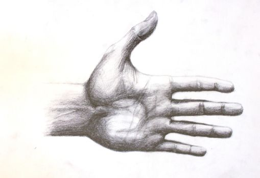 A Hand by firefly6661