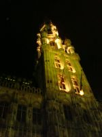 Lights on Brussels City Hall by Vetriz