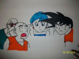 The whole DBZ gang by bulmabriefs1313303