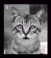 Breast Cancer Care Cat by Mz-Kitts