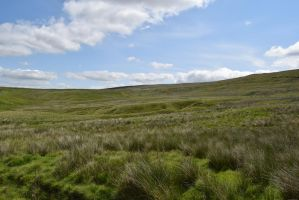 Boulsworth Hill Stock 1 by Lavander-Thistle