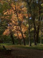 Time Stands Still by Alexandru1988