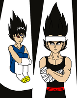 Hiei and Vegeta - Cosplay by Kaiju-Borru-Zetto