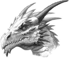 Dragon Head by AngelonyourShoulder