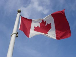 Canadian Flag by MapleRose-stock