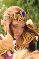 Zelda Cosplay: Fate by Yesta-sensei