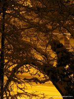 Snow On My Street by eMBeeL