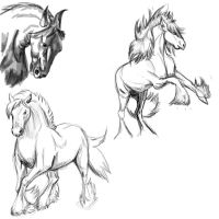 Horse Poses: Study1 by FlameFoxe