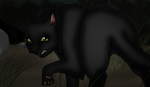 Hollyleaf by duskingxwarrior