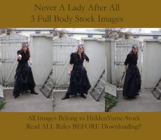 Never a Lady After All by HiddenYume-stock