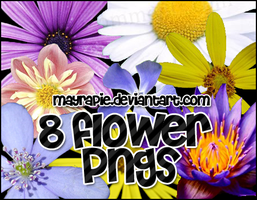 flower pngs by mayrapie