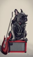 AC/DC the dog by zIoana
