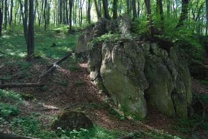 place 29- forest, spring, rock by oro-elui-stock