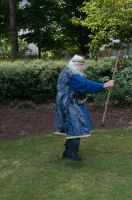 2014-08-31 Wizard in Park 09 by skydancer-stock