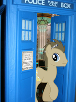 Doctor Whooves and the TARDIS by brentsienna