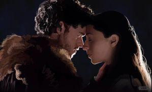 Robb Stark and Talisa Maegyr by Paganflow