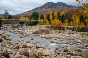 White Mountains  Fall Foliage  189 by FairieGoodMother