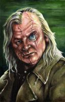 Brendan Gleeson as Moody by sullen-skrewt