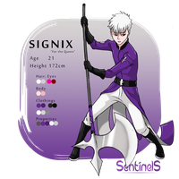 Character profile sheet Signix by MondoArt