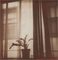 When The Rain Hits My Window by JillAuville