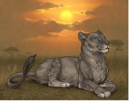My First Cocoa Lioness! by link-fan