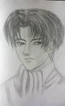 Attack on Titan: Levi is that a smirk I see? by TheAshenDirewolf