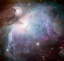 Orion Nebula by jswis