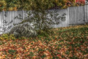 Fall HDR 3 by flowofwoe