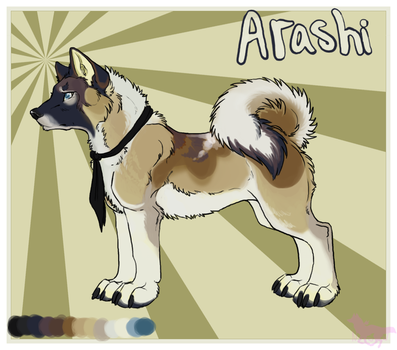 Akita Contest Entry by nightspiritwing