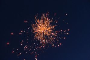 orange and red flower type firework explosion by KMKramer44
