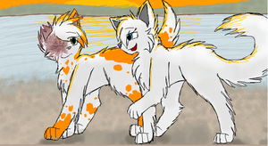 Brightheart and Cloudtail by CascadingSerenity
