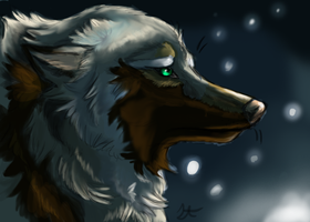 I know my Fate by Akadafeathers