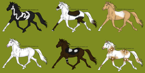 Throughbred adoptables by StarlitStables