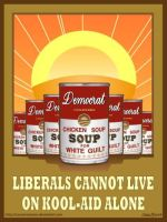 Chicken Soup for Liberals by Conservatoons